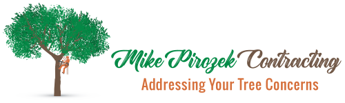 Logo Mike Pirozek Contracting
